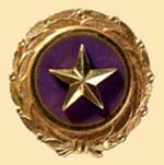 Gold Star Lapel Button