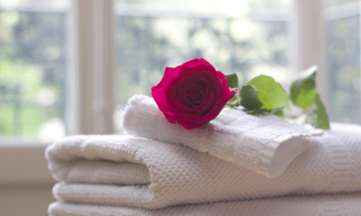 White Towels and red rose