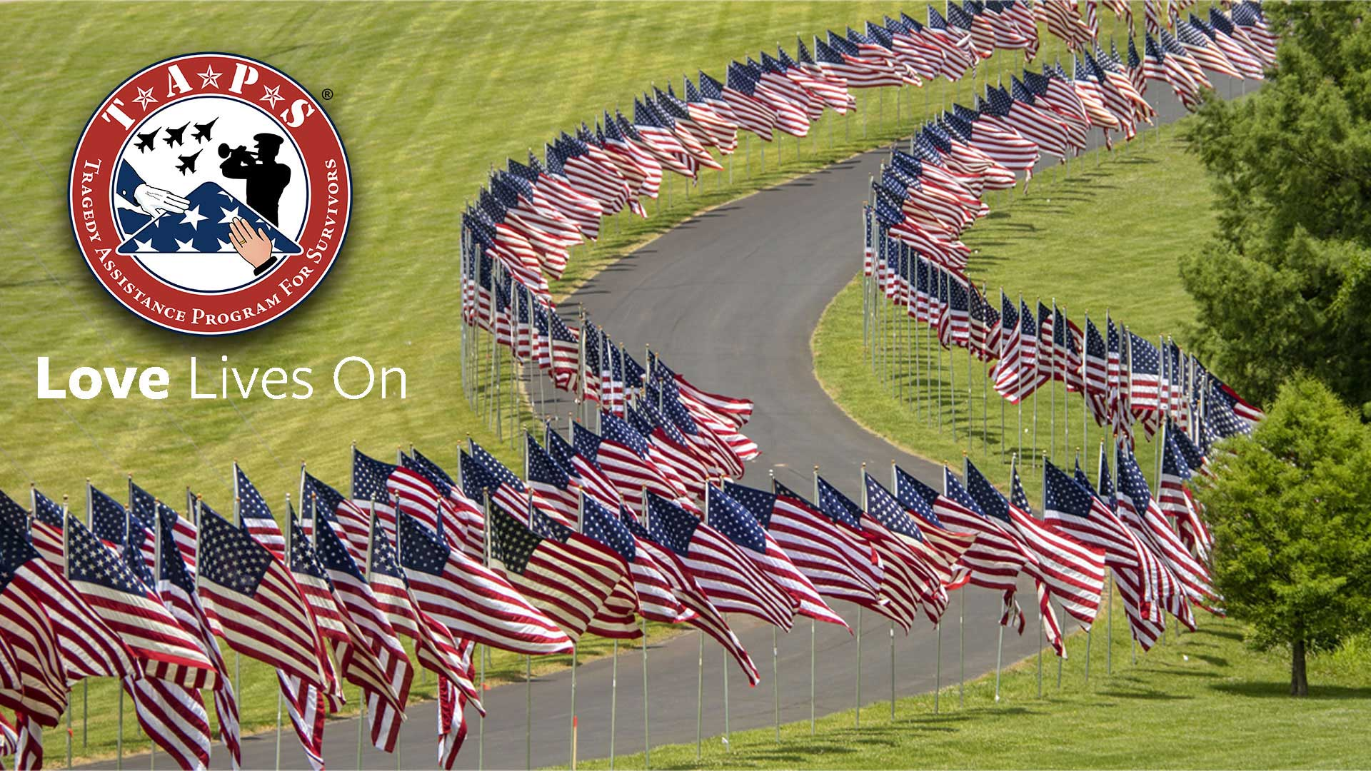 zoom background option 4 - american flags along curving road